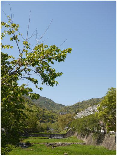 芦屋川と六甲山